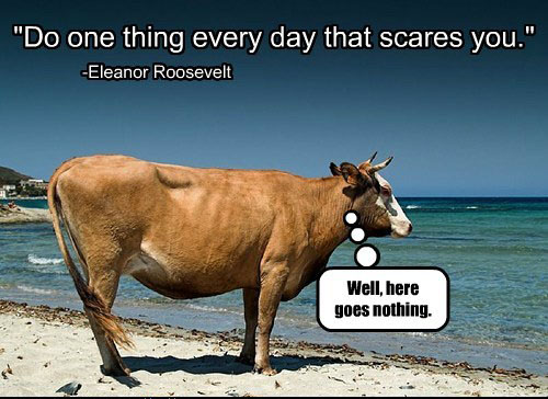 Cow-Fear
