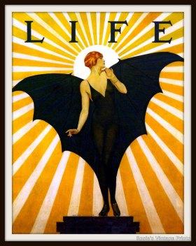 Life Flapper Bat