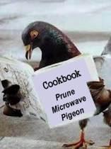 Episode 13 Pigeon