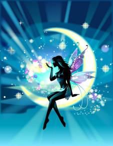 Midnight moon farie