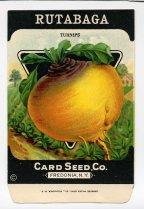 Rutabaga seeds