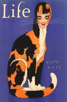 1926 life halloweenkitty