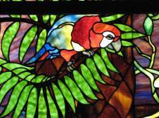stainge glass_parrot