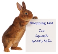 Rabbit_Shopping-list
