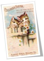 Kittens Daisies wheat ad vintage