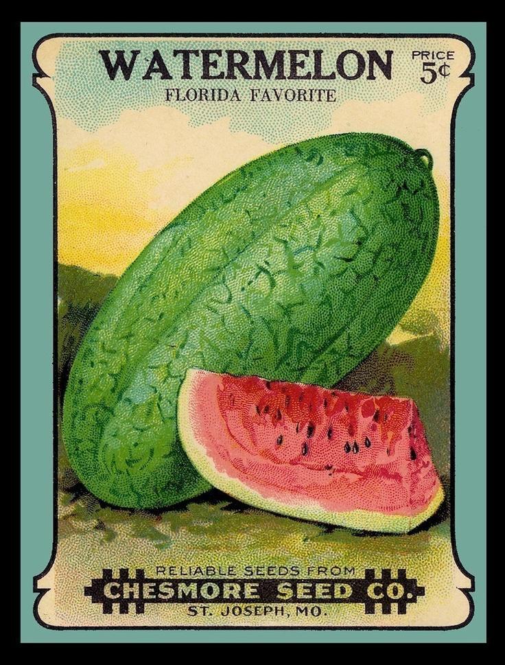 Three Ingredients II - 15: Ribs, Watermelon, Corn (4/6)