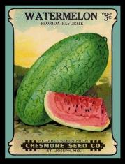 Vintage Watermelon Seeds