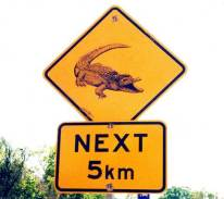 Sign Gator