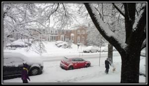2015 March snow single