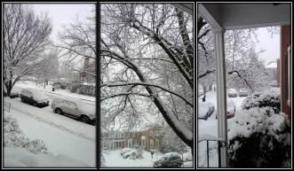 2015 March snow triptic