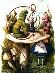 Alice Mushroom Victorian