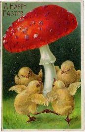Chicks Mushroom Victorian