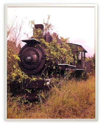 Abandoned Locomotive 2