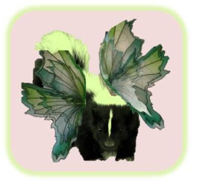 Green fairy skunk