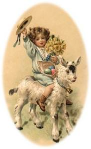 Girl rides goat