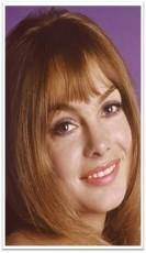 Jean Shrimpton head-shot