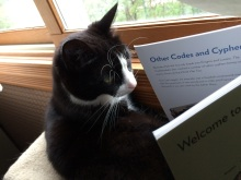 MiMi reading_Dan