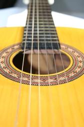 Spahish guitar dreamstimefree_250123