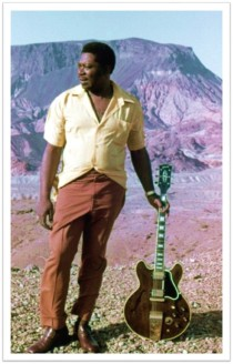 BB King Lucille desert