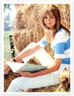 Jean Shrimpton Look 1966