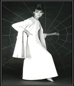 Jean Shrimpton spider web