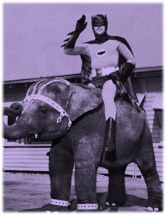 Batman Elephant purple