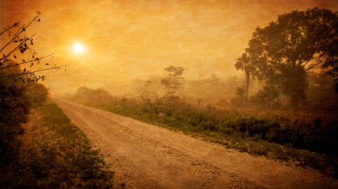 Dirt Road warm color seth-fogelman-26949