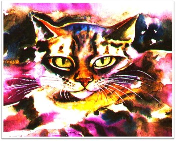 Tabby Cat pink orange Janet Weight Reed