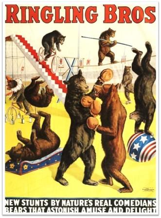 Ringling Bros Bears circus