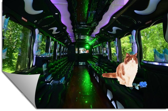Party Bus inside Lilith