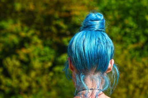 blue-hair-Bun Beira Pixabay free