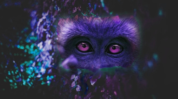 ape eyes purple