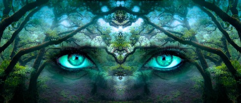 eyes forest aqua fantasy-pixabay