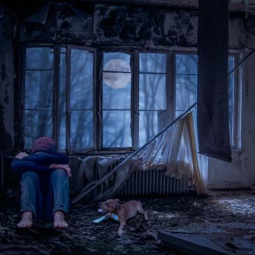 Person Apandoned home dog debris moon