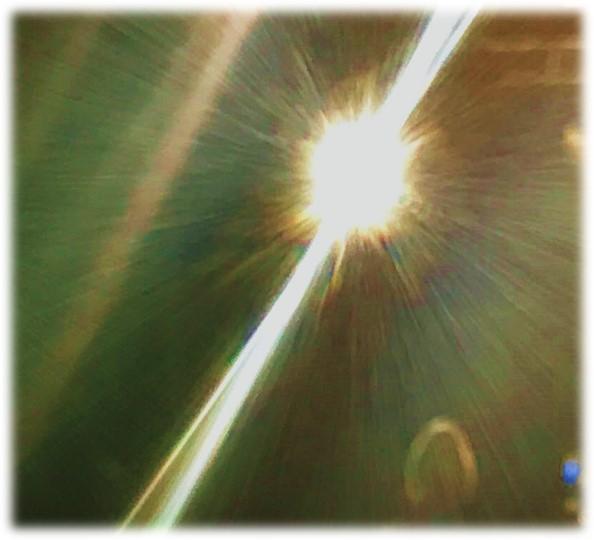 Flash cropped image Dan Antion