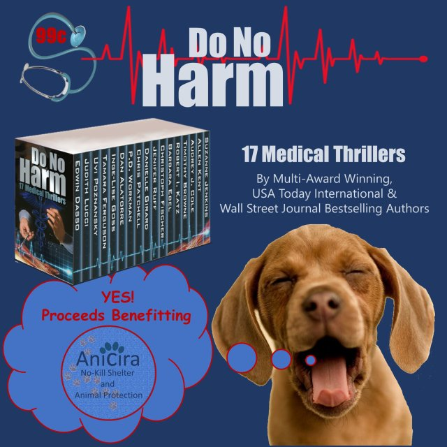 No Harm puppy