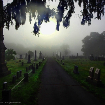 Foggy Cemetery, Dan Antion