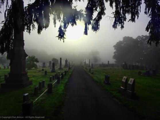 Foggy Cemetery, Dan Antion