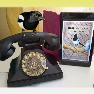 "Jinx on rotary phone next to ""Brother Love - a Crossroad"" on my Kindle."