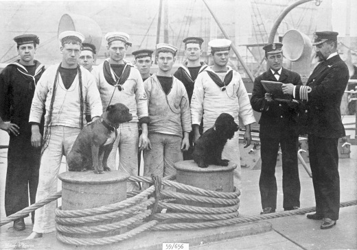 Crewmen of HMS Trafalgar with dogs Malta 1897