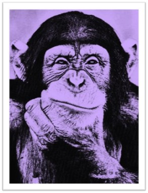 Smirking Chimp, courtesy of Chris Graham