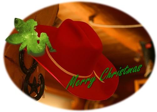 Fairy Cowboy hat Christmas