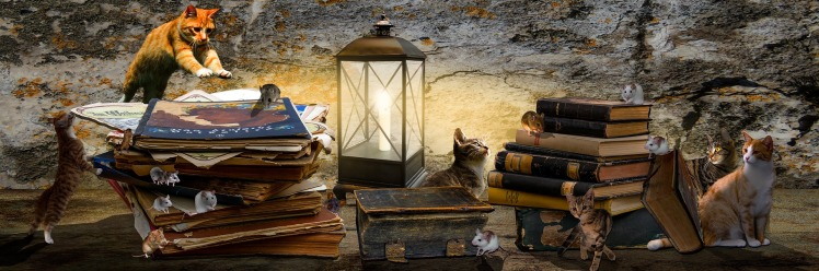 Tabby Cats n books Gellinger Pixaby banner