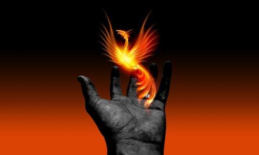 hand gray w Phoenix Rafael Moura Pixabay