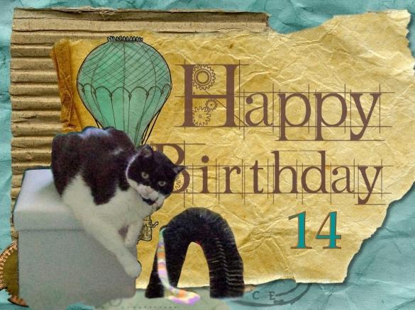 Crystal happy birthday 14