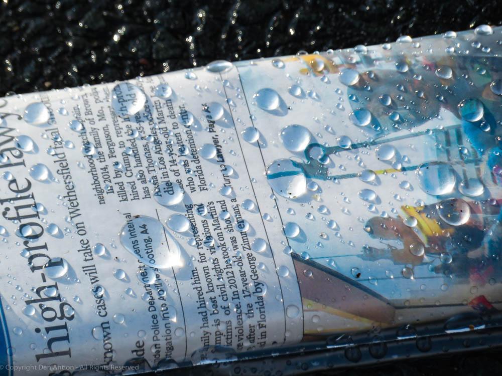 Newspaper in rain Dan Antion