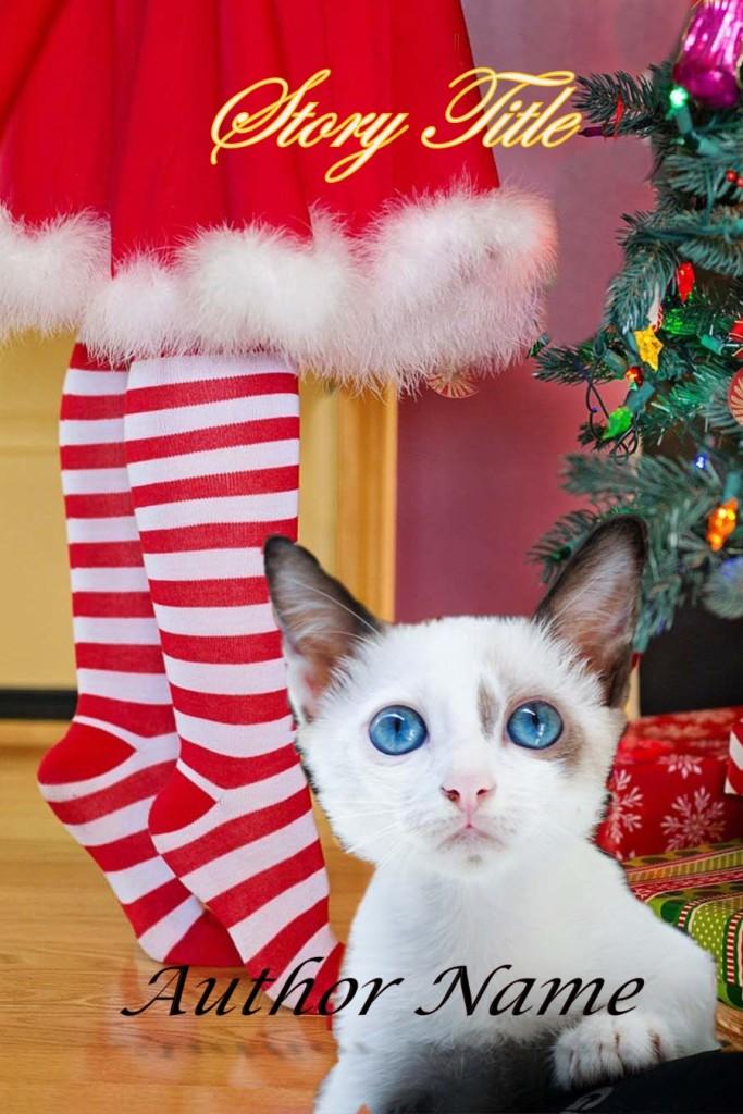 Group II. Christmas Kitten, Blue Eyes, Stripe Stockings