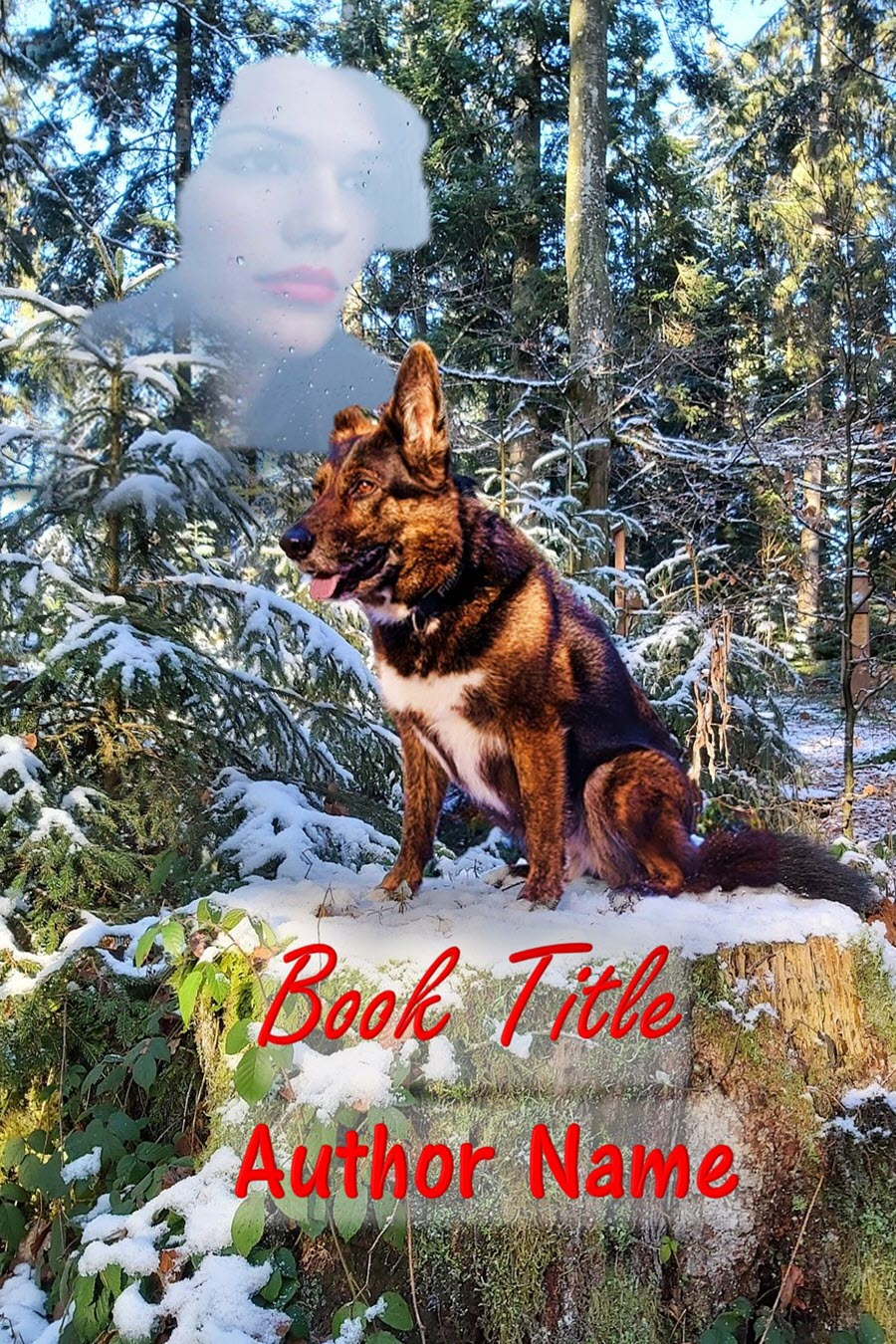 Group I. German Shepherd Dog, Forest, Snow, Mysterious Woman
