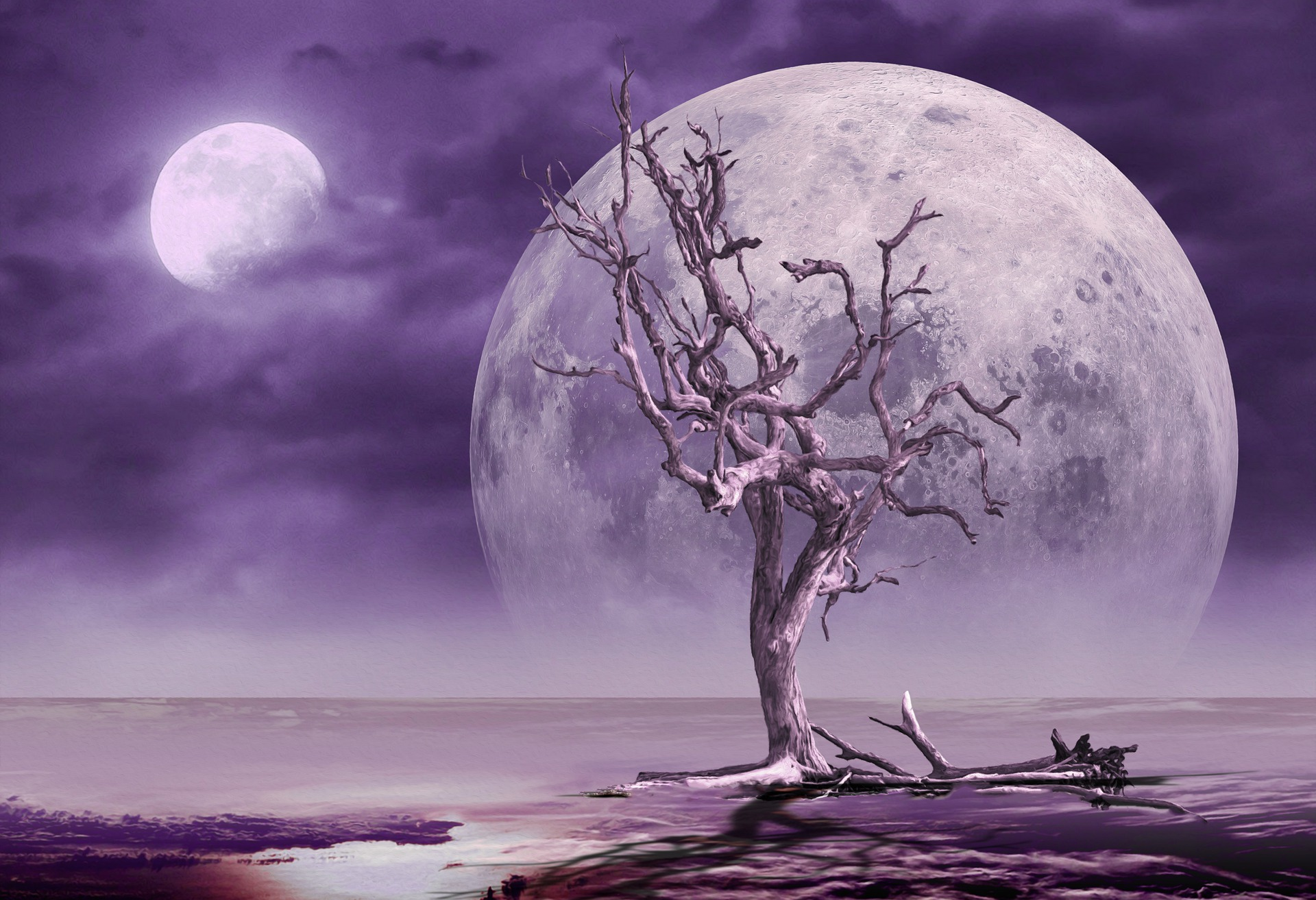Purple Moon dead tree fantasy Prettysleepy1 Pixabay